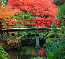 Kubota Gardens by Inge Johnsson