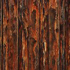 Wall of Rust by Celia Strainge