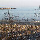 Winthrop Beach 3 by photosbycoleen