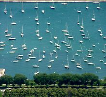 Chicago Marina by Dan Owens