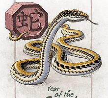Chinese Zodiac - Year of the Snake by Stephanie Smith