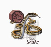 Year of the Snake Kids Clothes