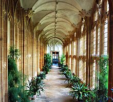 The Cloisters by Clive