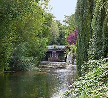 River Idle at Retford by Ray Clarke