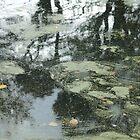 Tarkovski pond by SarahMcD0101