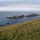 Shetland by Fiona MacNab / Orcadia Images by Fiona MacNab
