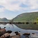 Jordan Pond, Acadia National Park, ME by Jaymin Mehta