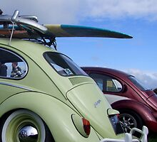 Surfin' Beetle by Richard Yeomans
