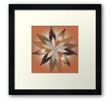 Fall Leaves 2 Framed Print
