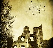Dilapidated Palace by Ethem Kelleci