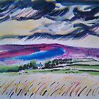 'Windy Day, Intake Farm, Barden Moor' by Martin Williamson (©cobbybrook)
