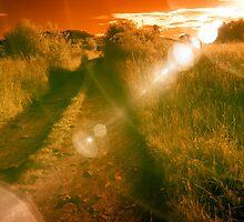 Golden Red Light by Ethem Kelleci