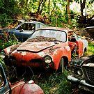 Needs Repair by Sam Scholes