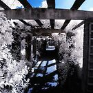 The Corridor by Liam Diamond