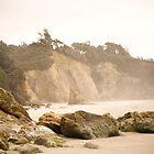 Beach Rocks - Cannon Beach, OR by Nick Mann