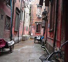 Village in Shanghai by tsengtification