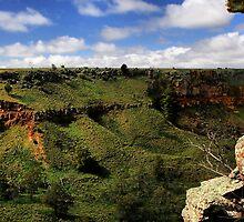 Werribee Gorge Landscape View by Stephen Ruane