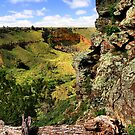 Werribee Gorge Portrait View by Stephen Ruane