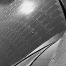 Sydney Opera House Study in Black & White (pt3) by Janie. D