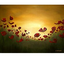 Poppies in the Rising Sun Photographic Print