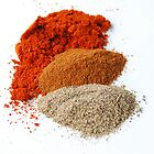 Spices  by stevekellyphoto