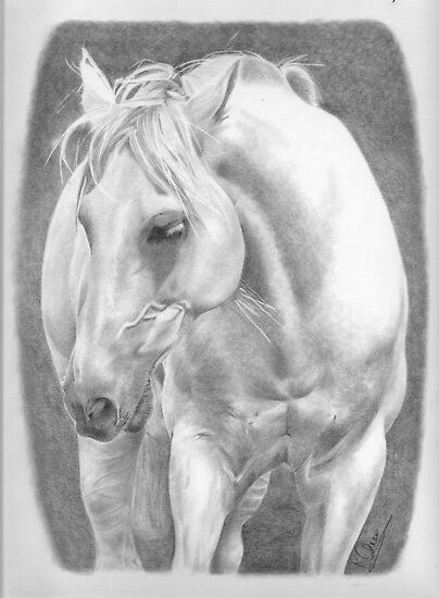 White Beauty by Karen Townsend