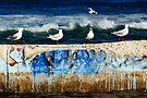 Seagulls - Pool Patrol by clydeessex