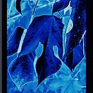 Icy Leaves by PoeticHeartArt
