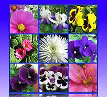 Colours of Summer Floral Collage by BlueMoonRose