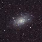 The Triangulum Galaxy by Sylvain Girard