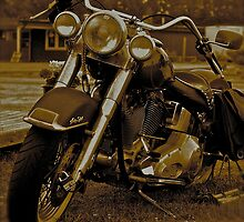 My Harley - Davidson   -  Road to Hell . Brown Sugar Story. F* View (816) favorited by (2) thank you ! Hold Your Memories. Buy what you like! by © Andrzej Goszcz,M.D. Ph.D