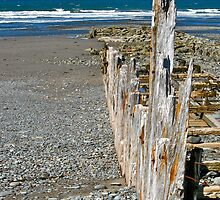 Salmon River Beach by David Davies