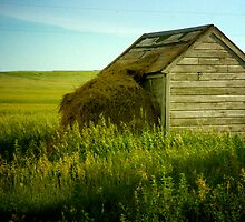 """Shed"" - McIntosh County, North Dakota by jscherr"