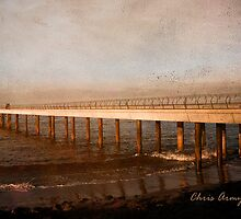 Days Gone By by Chris Armytage™