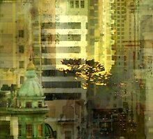 """As the sun goes down"" San Francisco by Elizabeth Bravo"