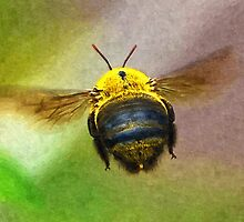 Bumblebees Flight by MaxSteinwald