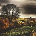 A  November Afternoon Near Keld In Swaledale by patrixpix