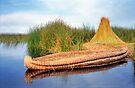 Reed Reflection - Lake Titicaca, Peru by Nigel Fletcher-Jones