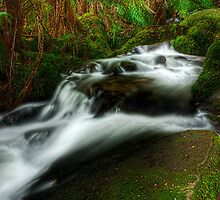 Cement Creek #1 by Jason Green