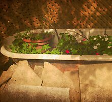 The Courtyard IV _ (Mangiacake Panini Shoppe) by Robin Webster