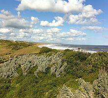 Viewpoint of high-up on a handrail @ Logan's beach. by Britt-Astrid