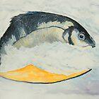 Fish Dish by allwyn