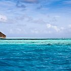 Land Free - The Maldives by Matthew Doerr