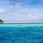 Land Free - The Maldives by Matthew Doerr