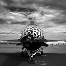 F-16 Check by Rees Adams