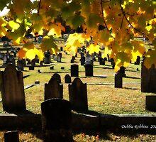 Fall Orton Cemetery by Debbie Robbins
