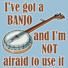 I've Got a Banjo by evisionarts