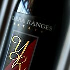 2005 Shiraz  by Jenni Tanner