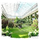 Longwood Gardens picture perfect 4...... by DaveHrusecky