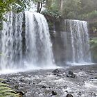 Russell Falls, Mount Field National Park, Tasmania by TonyCrehan